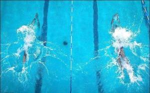 مهنی نسب: باید به شناگران نوجوان توجه ویژه شود