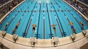 تقویم ورزشی شنا سال ۹۳ بررسی می شود