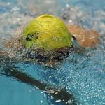 مرحله پایانی لیگ شنا (عکاس: علیرضا کرمی) سرزمین موج های آبی مشهد فاتح یازدهمین دوره رقابت های قهرمانی شنا باشگاه های کشور شد.
