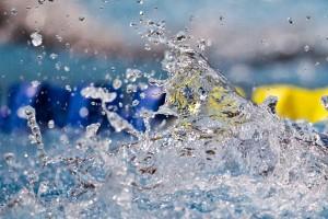 برنامههای فرهنگی ورزشی هیات شنای قم در دهه مبارکه فجر
