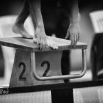 کمیته آموزش فدراسیون شنا،شیرجه و واترپلو زمان برگزاری دوره آموزشی داوری درجه 3 شنا را اعلام کرد.