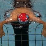 رقابت های صبح روز نخست از مرحله چهارم و پایانی مسابقات قهرمانی شنای باشگاه های کشور (جام خلیج فارس) سال ۱۳۹۳ با برگزاری شش ماده به پایان رسید.