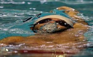 برگزاری اردوی آماده سازی تیم های ملی شنا