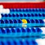 کمیته آموزش فدراسیون شنا،شیرجه و واترپلو اسامی قبولی های کلای درس 2 مربیگری بانوان را اعلام کرد.