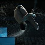 اردوی تیم ملی شیرجه ایران برای کسب آمادگی هرچه بیشتر پیش از شروع مسابقات کسب سهمیه ورودی المپیک، از دوشنبه (18 آبان 1394) در استخر مجموعه ورزشی آزادی تهران آغاز شد.