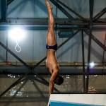 تمرینات صبح و عصری تیم ملی شیرجه ایران با حضور سه ورزشکار همچنان در استخر قهرمانی آزادی تهران ادامه دارد.