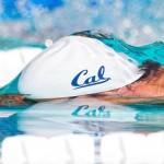 اسامی قبول شدگان آزمون نهایی دوره مربیگری درجه ۳ شنا به مدرسی فاطمه کمرهئی اعلام شد.