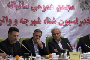سجادی: وزارت از برنامههای فدراسیون شنا حمایت میکند