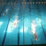 مسابقات شنا جام فجر پارسیان رده سنی۱۲-۱۱ و ۱۴-۱۳ سال از سه شنبه تا جمعه (٢٠ تا ٢٣ بهمن ١٣٩٤) در استخر انقلاب شیراز برگزار مي شود.