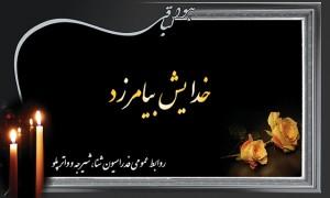 پیام تسلیت فدراسیون شنا به سیدمحمدعلی سادات منصوری