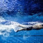 طبق اعلام کمیته آموزش کلینیک دو روزه تربیت مربی استعدادیاب ویژه مربیان آقایان و بانوان درجه 1 و 2 شنا  15 و 16 اسفندماه ۱۳۹۸ به میزبانی هیات شنا استان اصفهان برگزار میشود.
