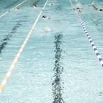 سرپرست هيات شنا، شيرجه و واترپلو استان بوشهر گفت: به منظور ترغيب جوانان بوشهري به ورزش شنا رايزني گرفتن ميزباني مسابقات كشوري شنا در يكي از رده هاي سني را آغاز كرده ايم.