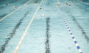 علویزاده: رایزنی برای گرفتن میزبانی مسابقات کشوری شنا را آغاز کرده ایم