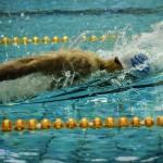 کاروان شنای ایران پس از حضور در مسابقات شنای انتخابی المپیک بوداپست رأس ساعت 03:30 بامداد فردا (دوشنبه) از طریق فرودگاه بینالمللی امام خمینی (ره) وارد ایران میشود.