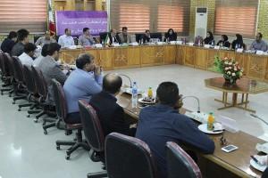 کمالی رئیس هیئت شنای استان بوشهر شد