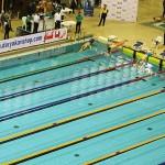 در مرحله پایانی چهاردهمین دوره مسابقات لیگ شنا کشور ۱۲ رکورد ملی رده های سنی بهبود یافت و در مجموع کل لیگ شنای امسال ۲۴ رکورد ملی جابجا شد .