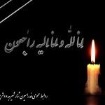 فدراسیون شنا در پی پیامی ضایعه در گذشت دختر نوجوان اقای دکتر دنیامالی از مدیران ورزشی و عضو شورای شهر تهران، را تسلیت گفت.