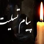 فدراسیون شنا در پیامی درگذشت پدر بزرگوار محمدرضا ولی را به ایشان و عموم بازماندگان تسلیت گفت.
