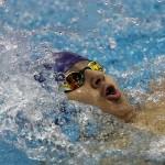 مرحله پایانی چهاردهمین دوره مسابقات شنای قهرمانی باشگاههای کشور از صبح امروز (یکشنبه) در استخر قهرمانی آزادی آغاز شد.