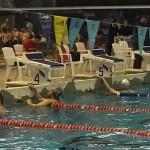 مسابقات شنا بزرگسالان كشور یادواره قهرمانان شهدای غواص و آتشنشان به همت هيئت شناى استان تهران امروز (پنجشنبه) در استخر قهرمانی آزادی آغاز شد.
