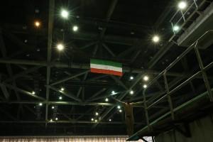 ترکیب نهایی تیم ملی شیرجه اعزامی به بازیهای کشورهای اسلامی