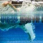شناگران ملی پوش ایران برای حضور پرقدرت در بازیهای داخل سالن آسیا (ترکمنستان ۲۰۱۷) هر روز با جدیت تمرینات خود را دنبال میکنند.