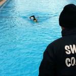 طبق اعلام کمیته آموزش فدراسیون یکدوره کلاس بازآموزی مربیگری شنا جهت کلیه درجات 3-2-1 ویژه بانوان و آقایان برگزار میشود.