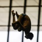 نتایج تخته سه متر مسابقات شیرجه قهرمانی کشور (یادواره مرحوم استاد محمد علی مجزا) در چهار رده سنی اعلام شد .