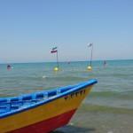 مرحله نخست مسابقات لیگ شنای آبهای آزاد استان مازندران با استقبال خوب طرفداران این ورززش آبی سهشنبه 14 تیر 1396 برگزار شد.