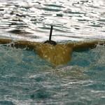 امروز(سهشنبه) آخرین تمرین تیم ملی شنا و شیرجه ایران پیش از اعزام به مسابقات ردههای سنی آسیا(ازبکستان 2017) برگزار شد.