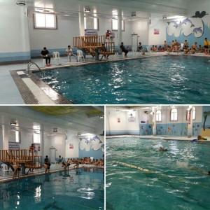 مرحله نخست جشنواره شنا دختران و پسران بوشهر