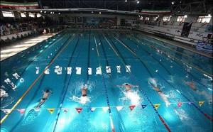 جشنواره شنای پسران زیر 10 سال استان فارس برگزار شد