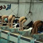 قهرمانان دور دوم جشنواره شنای استان فارس با عنوان جام خلیج فارس مشخص شدند.