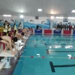 دور دوم جشنواره شنای پسران استان فارس(جام خلیج فارس) در دو گروه شهرستانهای شمالی و جنوبی استان برگزار و قهرمانان این رقابتها  مشخص شدند.