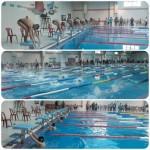 مرحله سوم لیگ شنای استان چهارمحال وبختیاری به مناسبت گرامیداشت دهه مبارک فجر دیروز (جمعه) با شرکت ۱۵۰ ورزشکار در استخر دانشگاه شهرکرد برگزار و به پایان رسید.