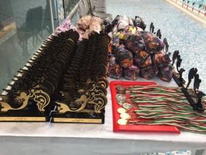 برگزاری جشنواره شنا دختران شهرستانهای شمالی و جنوبی استان فارس