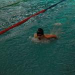 مسابقات شنا مسافت بلند کشور (جام فجر پارسیان) رده سنی ۱۱-۱۴ سالبه میزبانی استان فارس از روز گذشته(چهارشنبه) آغاز شد.