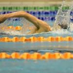 با توجه به اعلام کمیته فنی شنا رکوردگیری از شناگران ردههای سنی مختلف جمعه(18اسفند 1396) در استخر قهرمانی آزادی برگزار میشود.