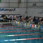 قهرمانان مسابقات شنا گرامیداشت دهه مبارک فجر استان فارس مشخص شدند.