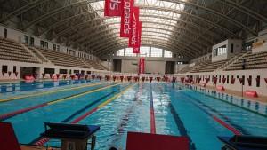 ملی پوشان شنای ایران از فردا کار خود را آغاز میکنند