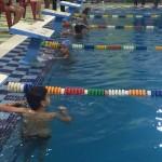 جشنواره شنا به مناسبت بزرگداشت روز جهانی فدراسیون بین المللی شنا به میزبانی استان فارس برگزار شد.