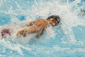 جابجایی 10 رکورد ملی و ردههای سنی شنا در تابستان 1397