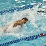 در روز پنجم مسابقات شنا بازیهای آسیایی جاکارتا، انصاری در ماده 50 متر پروانه و غلامپور و قرهحسنلو در 100 متر آزاد به آب خواهند زد.