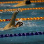 مرحله دوم رکوردگیری اختیاری شناگران برای کسب حدنصابهای استاندارد در پایگاههای ملی شنا تهران، مشهد، فارس و اصفهان روز پنجشنبه 13 دی 1397 برگزار میشود.