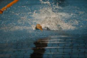 تاریخ برگزاری مسابقات شنا جام دهه مبارکه فجر تغییر کرد
