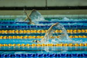اعلام نتایج روز دوم مسابقات شنا جام دهه مبارکه فجر