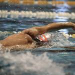 تقویم و برنامه زمانبندی مسابقات پیش رو شنا در شش ماهه دوم سال جاری اعلام شد.