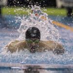 عضو تیم ملی شنا ایران گفت: تنها استخرهای روباز بازگشایی شدهاند و ما همچنان تمرینات هوازی و بدنسازی را انجام میدهیم.