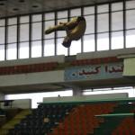 روز سهشنبه(31 فروردین 1400) دو شیرجه روی تیم ملی که شانس کسب سهمیه المپیک را دارند، در حضور کمیته فنی تست آمادگی خواهند داد.
