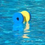 طبق اعلام کمیته تمرین در آب فدراسیون نخستین دوره تربیت مدرس تمرین در آب (Aquatic exercise)  اول الی پنجم بهمن 1398 برگزار میشود.